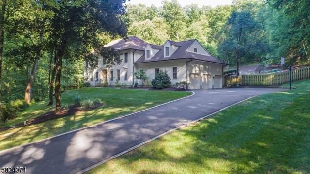 28 Chester Woods Dr, Chester Twp., NJ 07930 (MLS #3652967) :: The Douglas Tucker Real Estate Team
