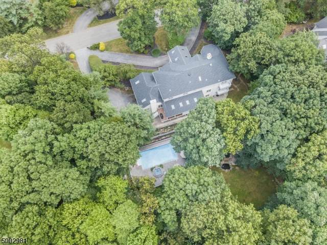 36 Alize Dr, Kinnelon Boro, NJ 07405 (MLS #3652984) :: REMAX Platinum