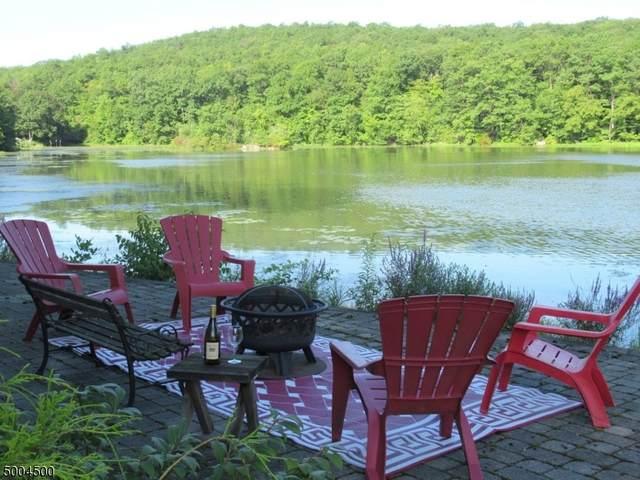 3 Spruce Ct, Vernon Twp., NJ 07422 (#3653350) :: NJJoe Group at Keller Williams Park Views Realty