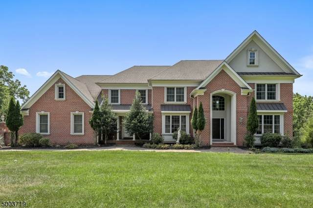 8 Meadow View Ct, Branchburg Twp., NJ 08876 (MLS #3653430) :: William Raveis Baer & McIntosh