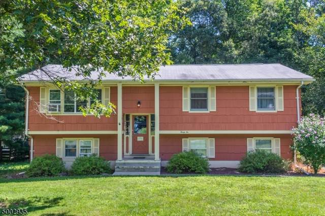 32 Robert St, Mount Olive Twp., NJ 07836 (MLS #3653630) :: The Douglas Tucker Real Estate Team