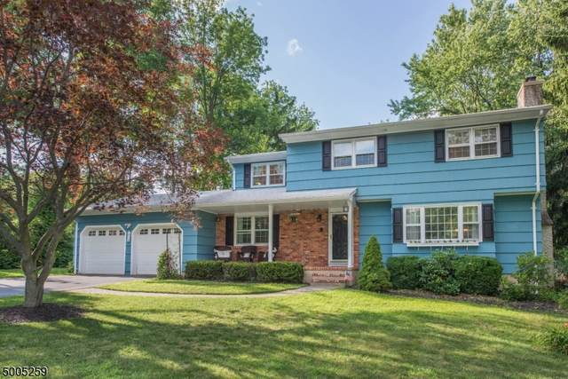 24 Jocynda Rd, Mount Olive Twp., NJ 07836 (MLS #3654101) :: The Lane Team