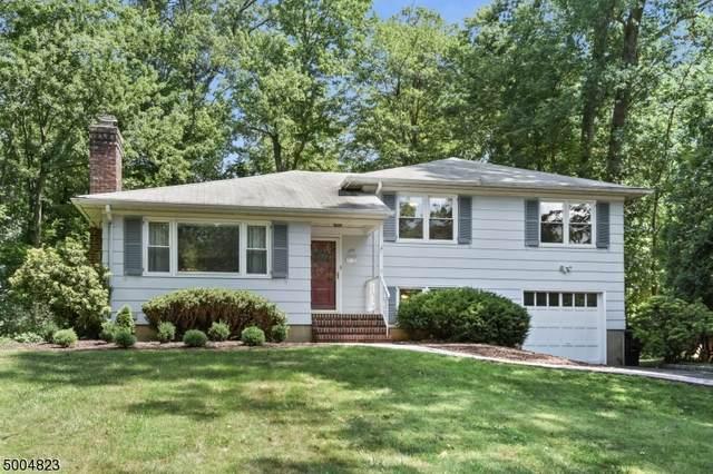 196 Rutgers Ave, Berkeley Heights Twp., NJ 07922 (MLS #3654190) :: The Dekanski Home Selling Team