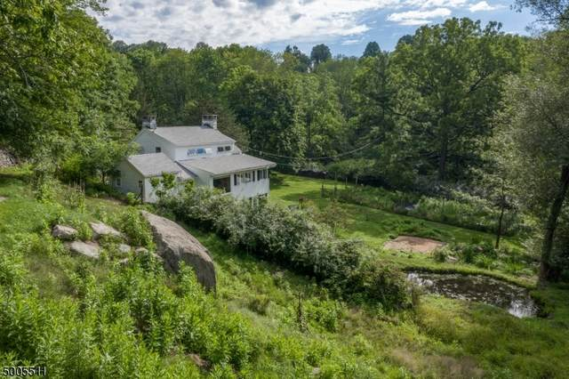 193 Millbrook Rd, Franklin Twp., NJ 07882 (MLS #3654198) :: Team Francesco/Christie's International Real Estate
