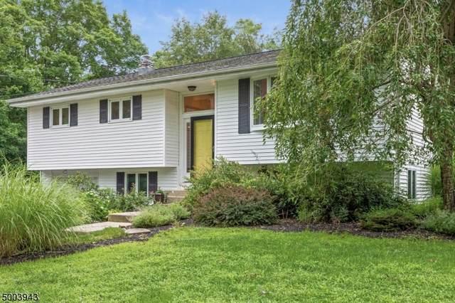 40 Ironia Rd, Chester Twp., NJ 07869 (MLS #3654632) :: The Douglas Tucker Real Estate Team