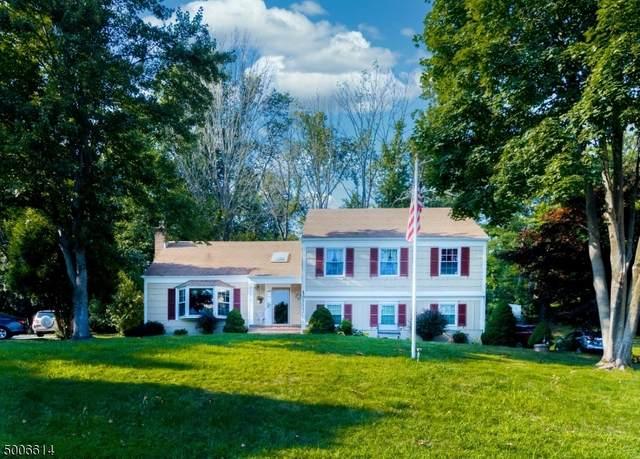 283 Gates Ave, Long Hill Twp., NJ 07933 (MLS #3656356) :: Team Francesco/Christie's International Real Estate