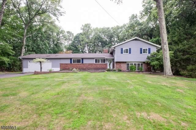 220 S Hillside Ave, Roxbury Twp., NJ 07876 (MLS #3658055) :: Team Francesco/Christie's International Real Estate