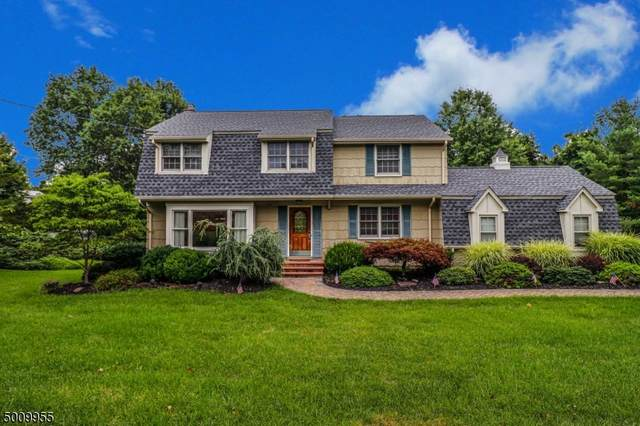 202 Carol Jean Way, Branchburg Twp., NJ 08876 (MLS #3658257) :: Mary K. Sheeran Team