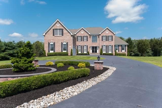 3 Allshouse St, Hillsborough Twp., NJ 08844 (MLS #3658268) :: Team Francesco/Christie's International Real Estate