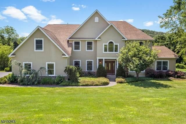 199 Old Turnpike Rd, Tewksbury Twp., NJ 07830 (MLS #3661126) :: Provident Legacy Real Estate Services, LLC