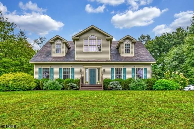 34 Route 645, Sandyston Twp., NJ 07826 (MLS #3661433) :: William Raveis Baer & McIntosh