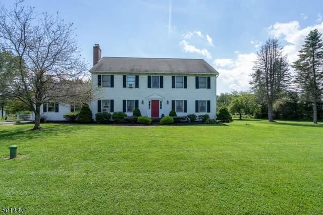 320 Adamic Hill Rd, Holland Twp., NJ 08848 (MLS #3662308) :: The Sue Adler Team