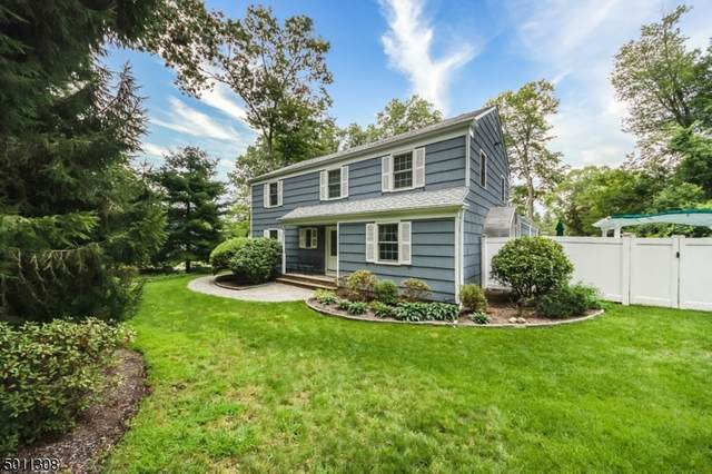 6 Starling Rd, Randolph Twp., NJ 07869 (MLS #3662337) :: Mary K. Sheeran Team