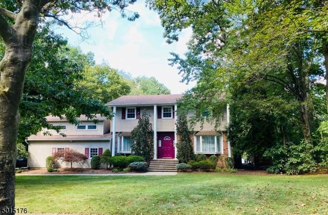 15 Birch Run Ave, Denville Twp., NJ 07834 (MLS #3663320) :: Halo Realty