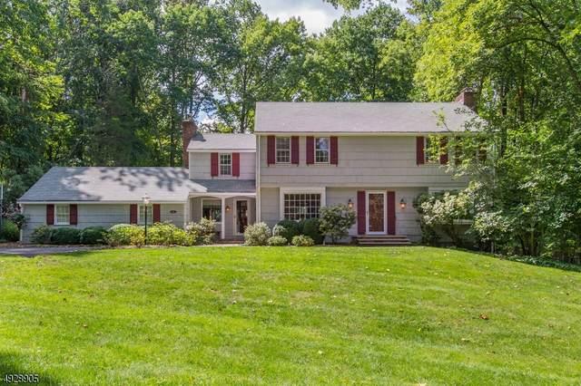 156 Peachcroft Dr, Bernardsville Boro, NJ 07924 (MLS #3663900) :: SR Real Estate Group