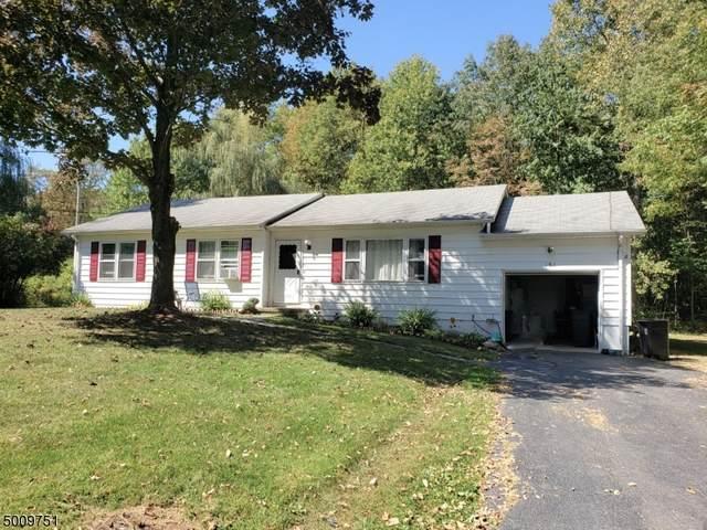 161 Mudtown Rd, Wantage Twp., NJ 07461 (#3663914) :: Daunno Realty Services, LLC