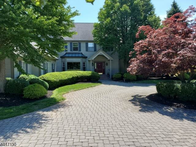4 Pond View Ct, Readington Twp., NJ 08889 (MLS #3664712) :: Weichert Realtors