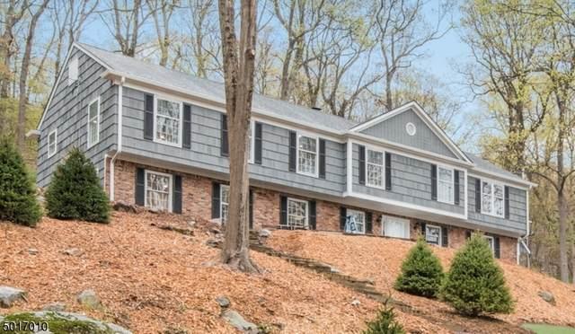 54 Green Hill Rd, Kinnelon Boro, NJ 07405 (MLS #3665048) :: Team Francesco/Christie's International Real Estate