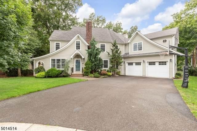 456 Birch Pl, Westfield Town, NJ 07090 (#3665327) :: Daunno Realty Services, LLC