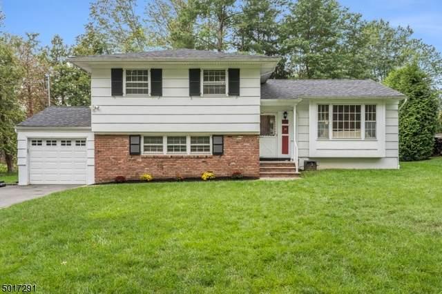 14 Midvale Dr, New Providence Boro, NJ 07974 (MLS #3665389) :: SR Real Estate Group