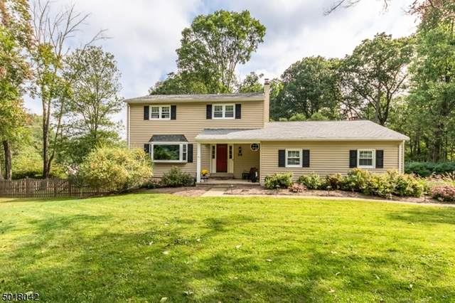 30 Robert St, Mount Olive Twp., NJ 07836 (MLS #3665618) :: Team Francesco/Christie's International Real Estate