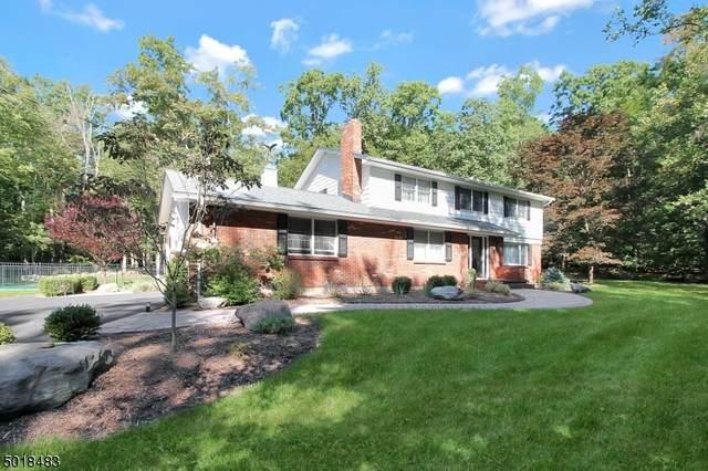 51 Stony Brook Rd, Blairstown Twp., NJ 07825 (MLS #3666028) :: The Sikora Group