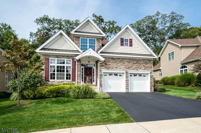 9 Harrison Way, Mount Arlington Boro, NJ 07856 (MLS #3666110) :: Team Francesco/Christie's International Real Estate