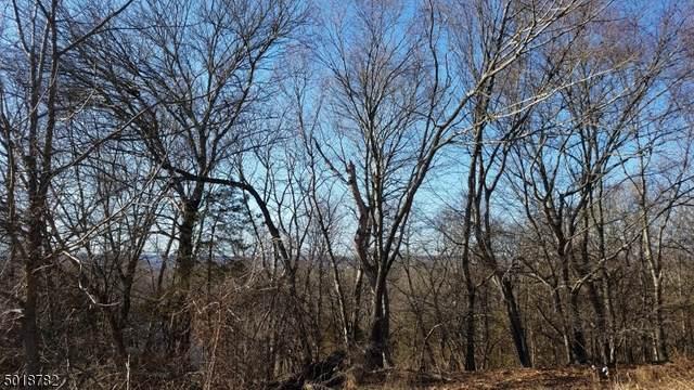 37 River View Dr, Hardwick Twp., NJ 07825 (MLS #3666183) :: SR Real Estate Group