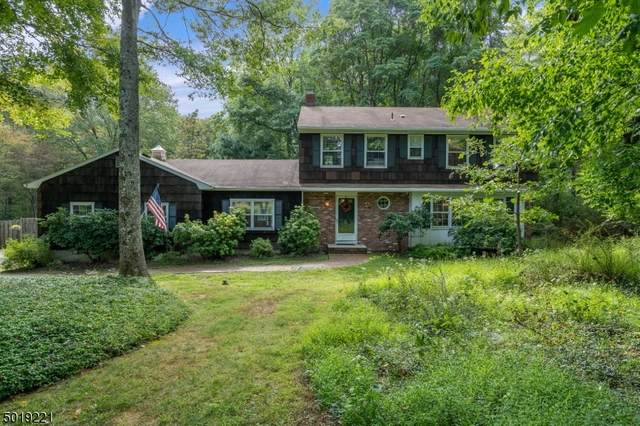 747 Backhus Estate Rd, Lebanon Twp., NJ 08826 (MLS #3667050) :: Halo Realty