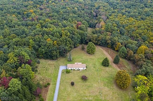 5 Hotalen Rd, Sandyston Twp., NJ 07826 (MLS #3667598) :: SR Real Estate Group
