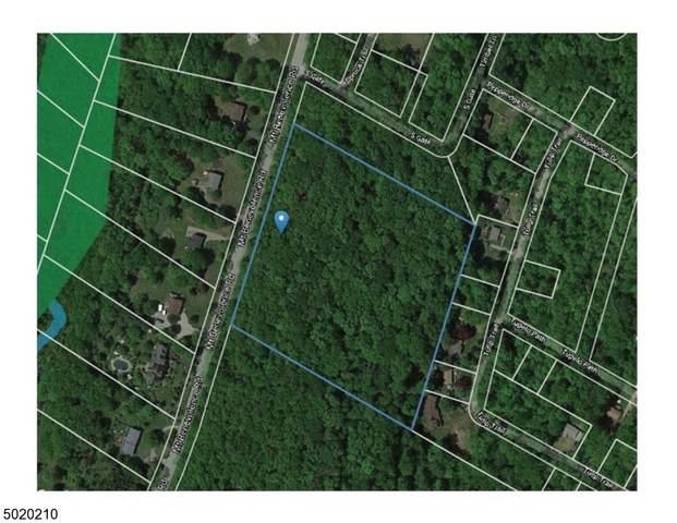 0 Mt Benevolence Rd, Stillwater Twp., NJ 07860 (MLS #3667623) :: SR Real Estate Group