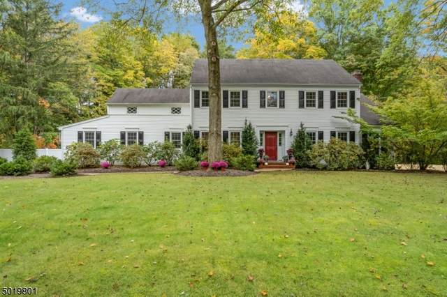 15 Palmerston Pl, Bernards Twp., NJ 07920 (MLS #3668887) :: William Raveis Baer & McIntosh