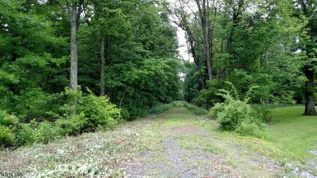 181 Old Croton Rd, Raritan Twp., NJ 08822 (MLS #3669779) :: The Michele Klug Team | Keller Williams Towne Square Realty