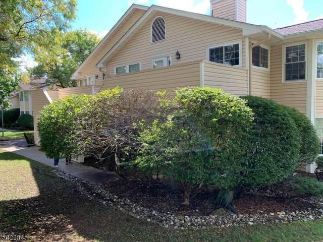 3 Dunbar Ct #3, Bedminster Twp., NJ 07921 (MLS #3669885) :: Provident Legacy Real Estate Services, LLC