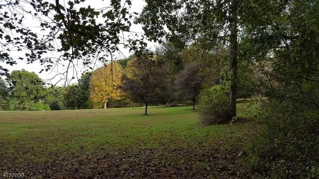 4 Horseshoe Bend Rd, Mendham Boro, NJ 07945 (MLS #3670013) :: The Sikora Group
