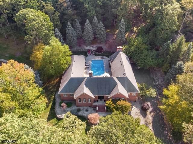 20 N Ridge Rd, Denville Twp., NJ 07834 (MLS #3670309) :: Provident Legacy Real Estate Services, LLC