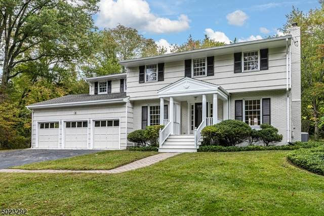 867 Cherry Hill Rd, Montgomery Twp., NJ 08540 (MLS #3670323) :: REMAX Platinum