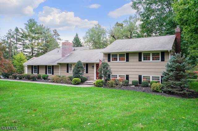 13 Old Chester Rd, Peapack Gladstone Boro, NJ 07934 (MLS #3670485) :: Mary K. Sheeran Team
