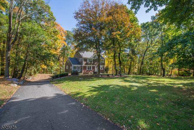 256 Long Meadow Rd, Kinnelon Boro, NJ 07405 (MLS #3671149) :: William Raveis Baer & McIntosh