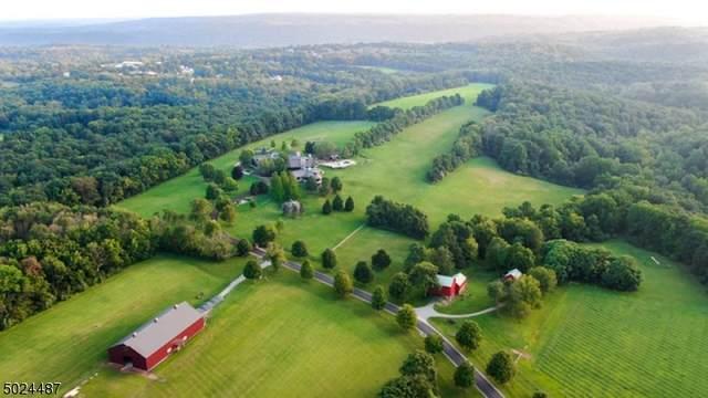 191 Miller Park Rd, Holland Twp., NJ 08848 (#3671700) :: Jason Freeby Group at Keller Williams Real Estate