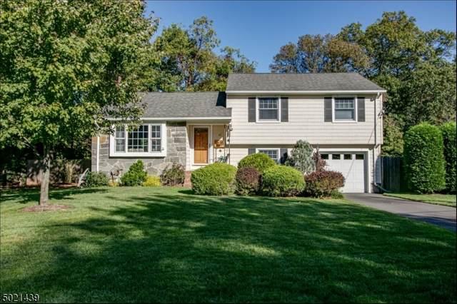 40 Fieldcrest Dr, Scotch Plains Twp., NJ 07076 (MLS #3672045) :: Provident Legacy Real Estate Services, LLC