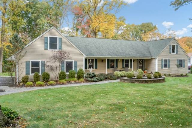 10 Christopher Dr, Washington Twp., NJ 07853 (MLS #3672613) :: Provident Legacy Real Estate Services, LLC