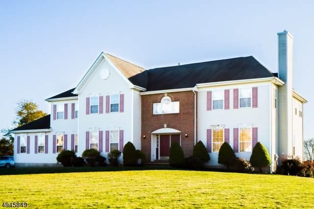 13 Saw Mill Dr, Franklin Twp., NJ 08873 (MLS #3672721) :: REMAX Platinum