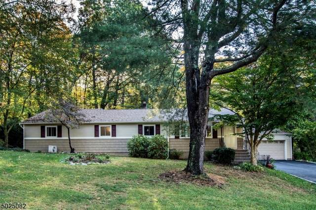 4 Kendall Dr, Ringwood Boro, NJ 07456 (MLS #3673031) :: William Raveis Baer & McIntosh