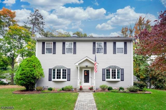 225 Intervale Rd, Parsippany-Troy Hills Twp., NJ 07005 (MLS #3673143) :: REMAX Platinum