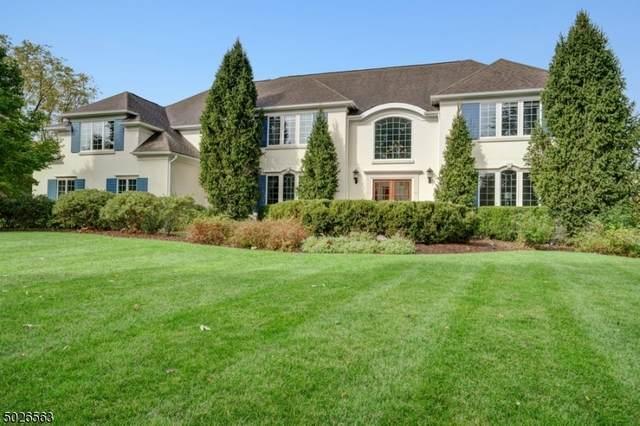 14 Paddock Ct, Bernards Twp., NJ 07920 (MLS #3673763) :: Team Francesco/Christie's International Real Estate