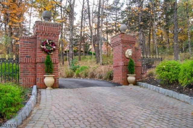 206 Taylors Mill Road, Readington Twp., NJ 08833 (MLS #3674267) :: Team Cash @ KW