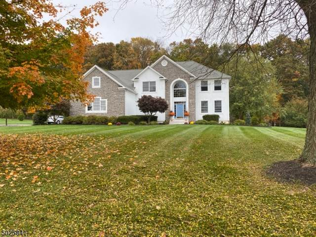 4 Stone Mill Dr, Alexandria Twp., NJ 08867 (MLS #3674859) :: SR Real Estate Group