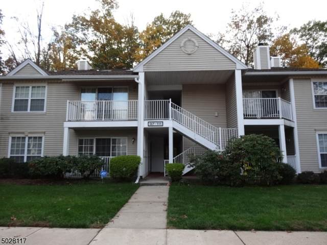 101 Lindsey Ct #101, Franklin Twp., NJ 08823 (MLS #3675366) :: Halo Realty