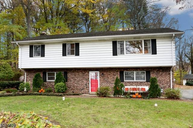 152 Skylands Rd, Ringwood Boro, NJ 07456 (MLS #3676438) :: Team Cash @ KW